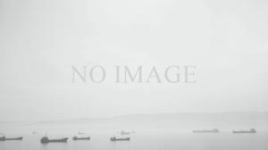 no-image-large